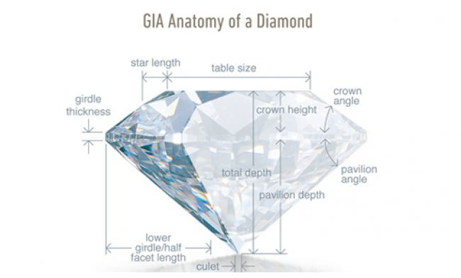 thumbnail for Diamond-anatomy.jpg